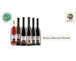 Rodica organic winery